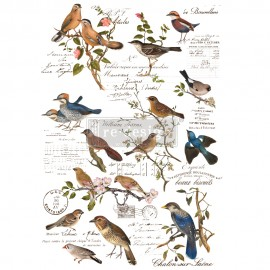 "PRIMA DECOR TRANSFERS 24x35"" POSTAL BIRDS"